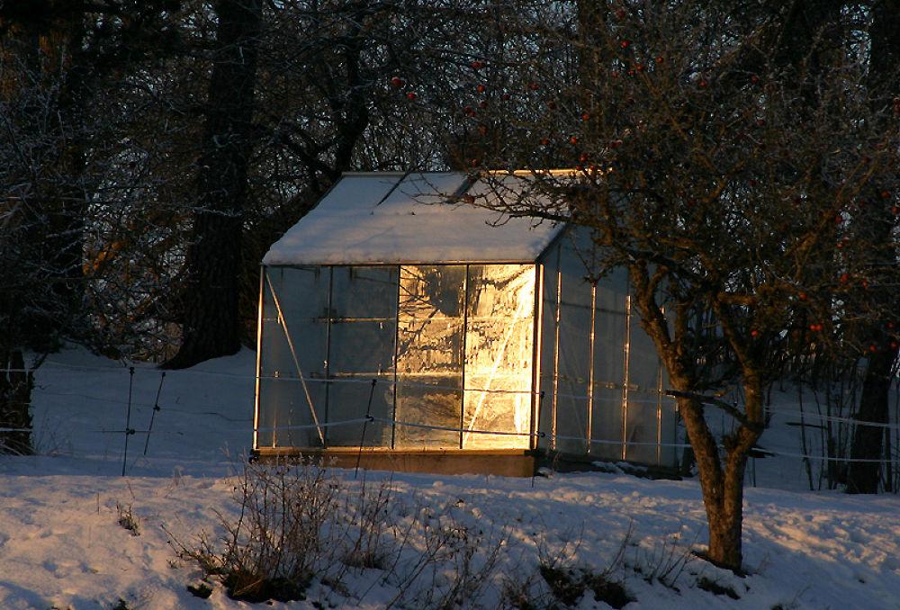 glasshouse by monanorrman