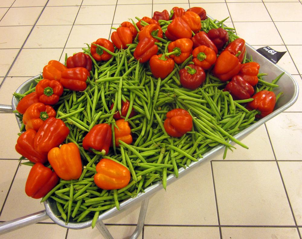 Vegetables by monanorrman