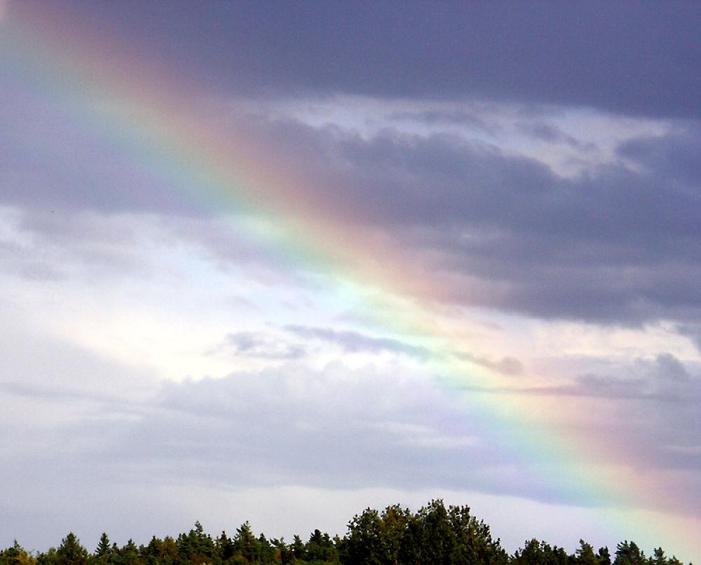 rainbow by monanorrman