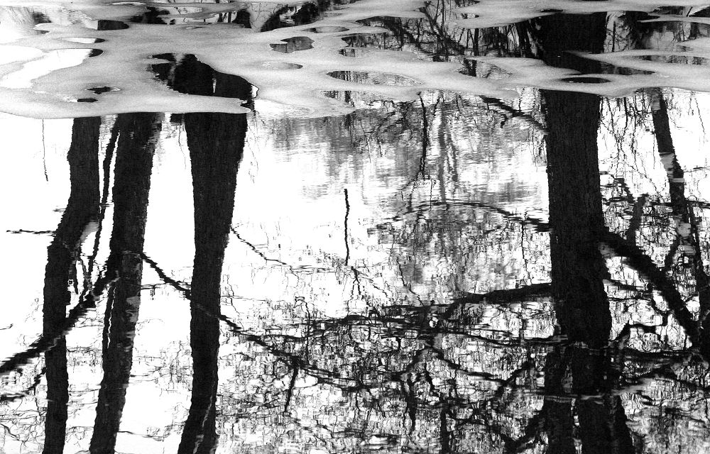 Photo in Black and White #bw #ypa2014 #nature #snow #water #sweden