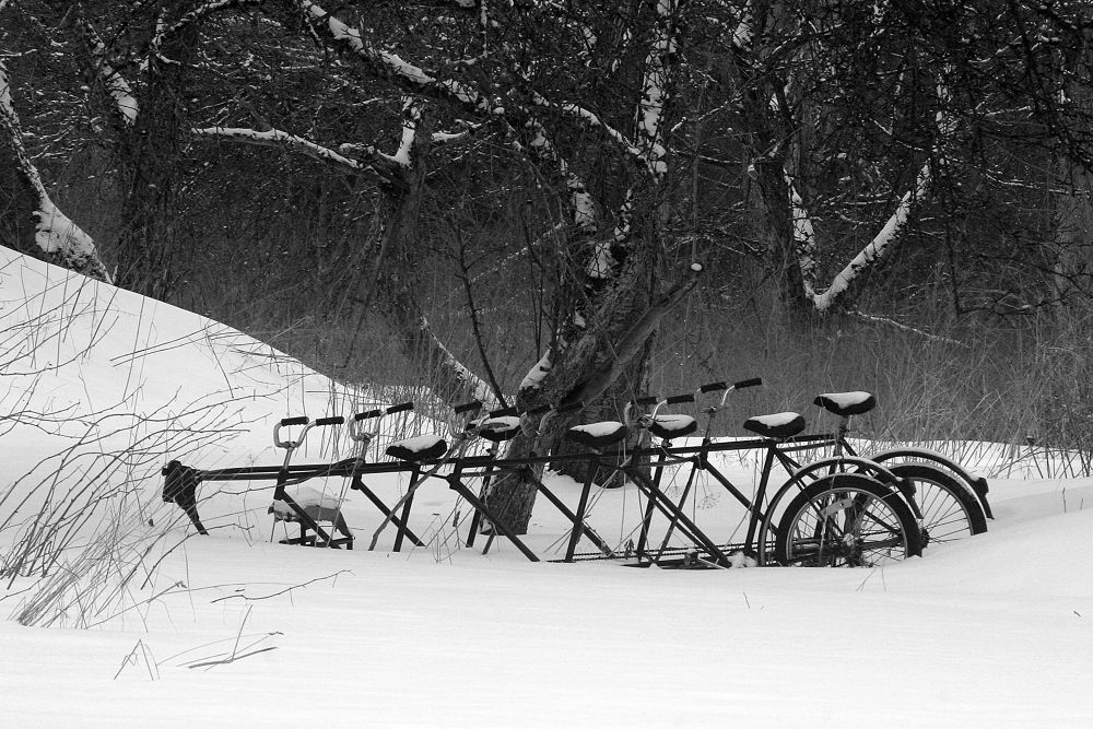 Photo in Black and White #ypa2014 #bikes #snow #bw