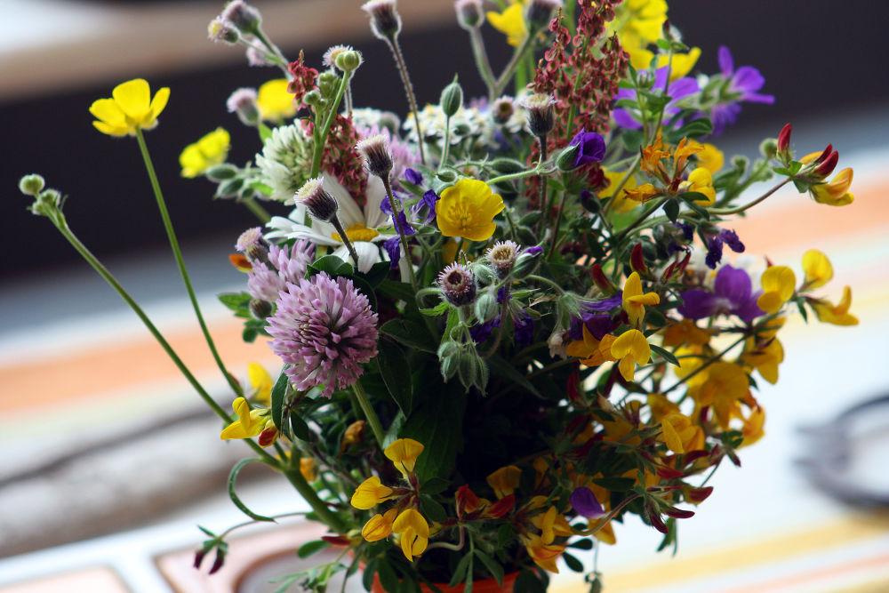 summer bouquet by monanorrman