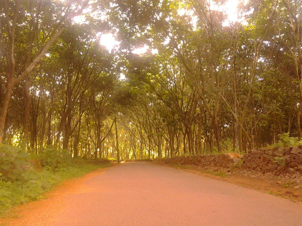 A village way.... by sumeshkk