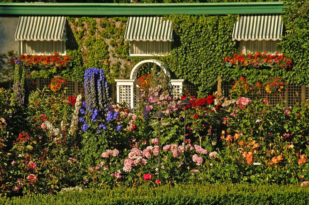 Butchart Gardens 3 by clivescottphoto