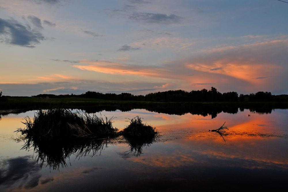 Prairie Pond 1 by clivescottphoto