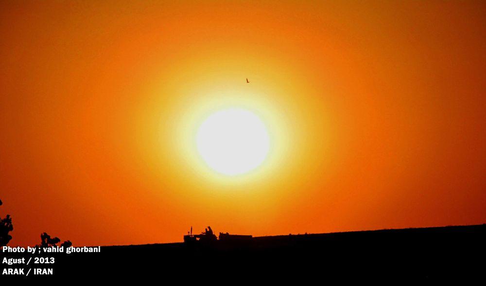 Sun by VAHID GHORBANI
