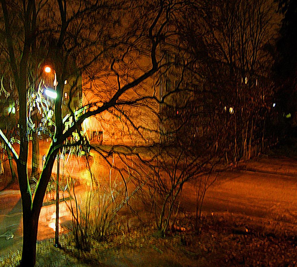 Tree on The Corner by Heljä Kostiainen