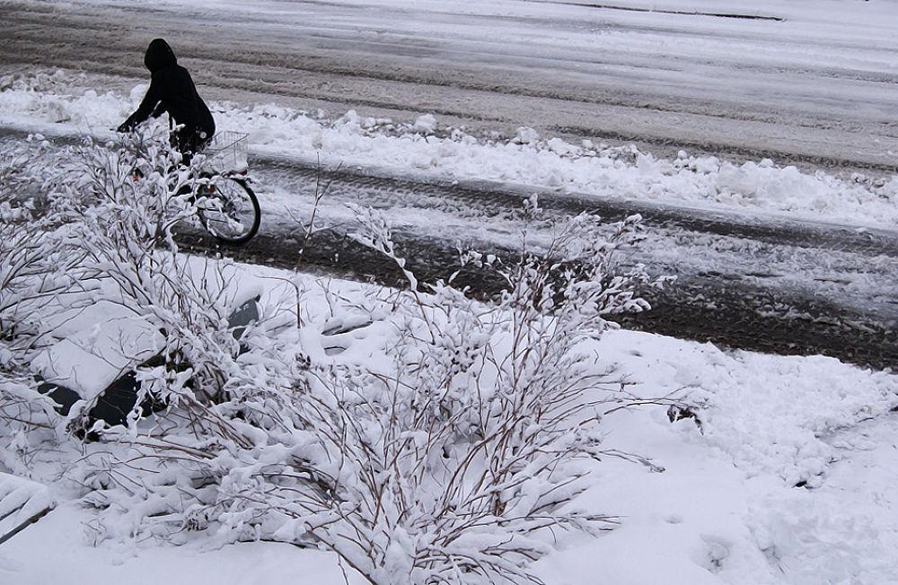 Racy Cyclist by Heljä Kostiainen