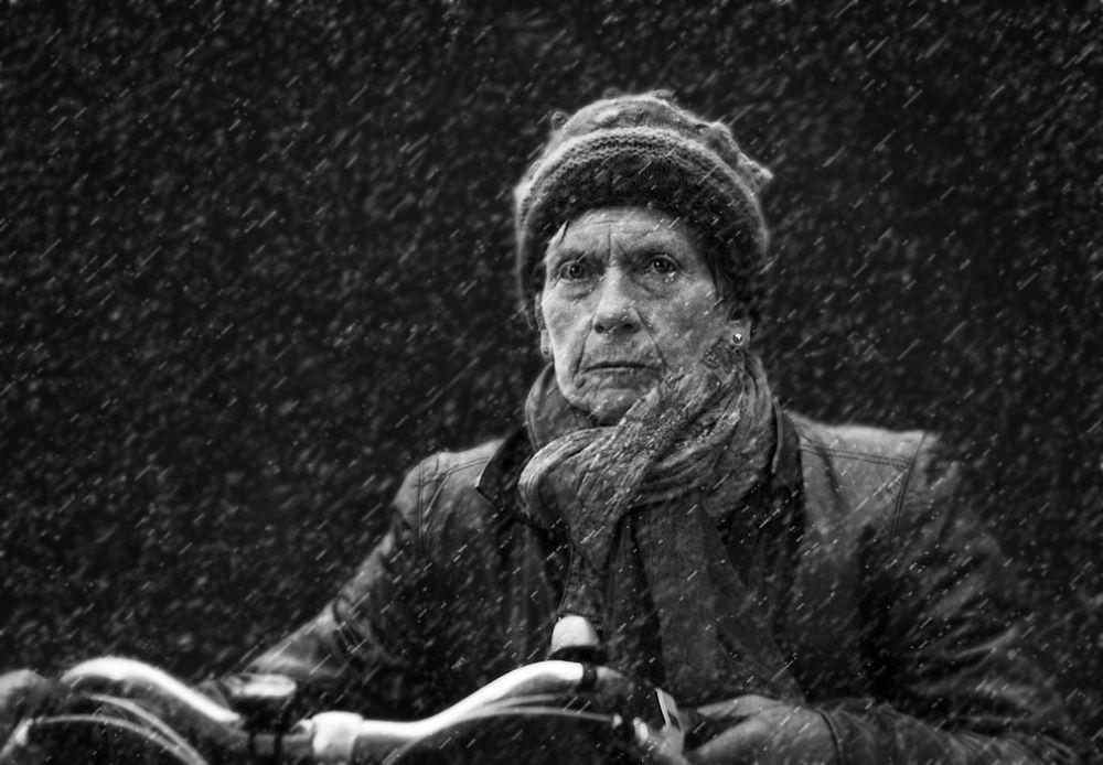 wet snow  by Chris Bosch