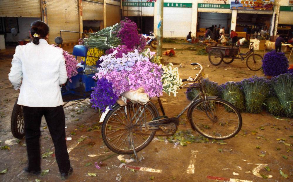 Yunnan_Kunming_Flower_Market_012 by Arie Boevé
