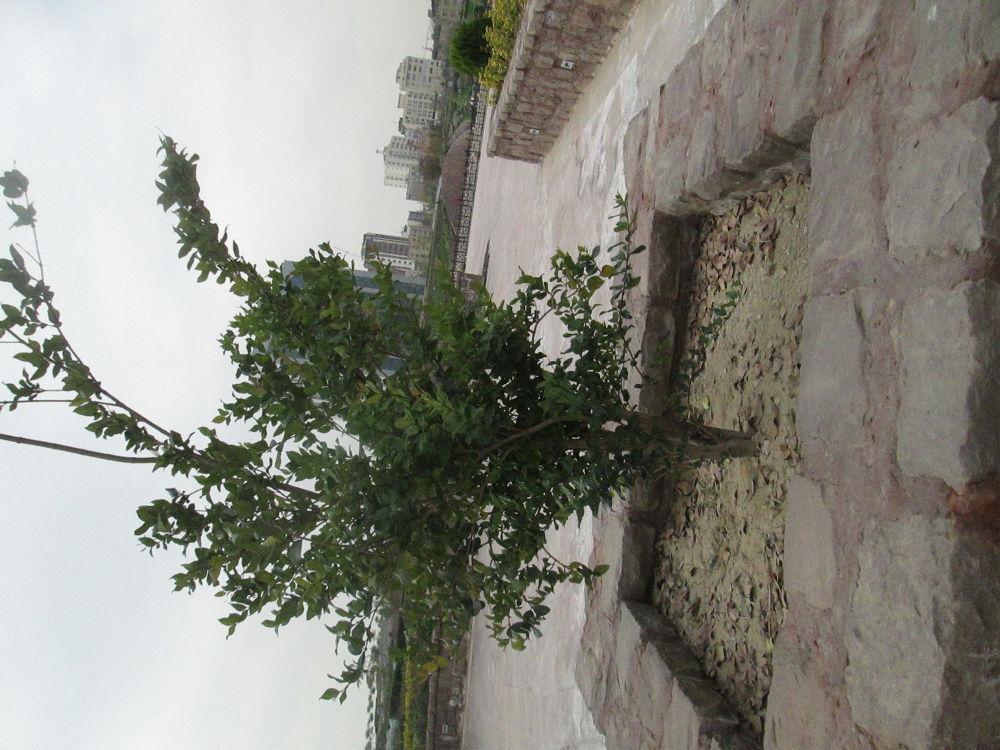 park ab va atash by mohammad rafiee