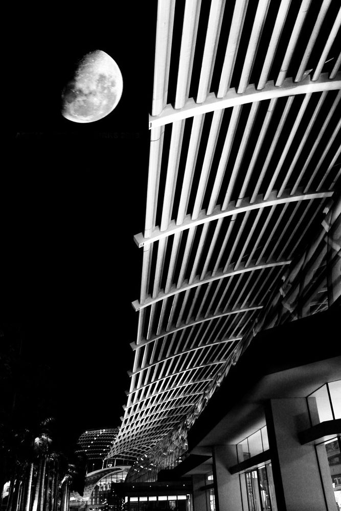 MOON VIEW by ACROON SOO CHEE VUI