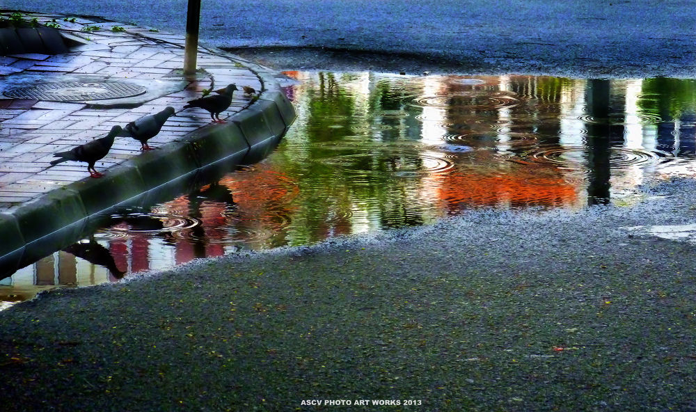 THE REFLECTION IN STREET by ACROON SOO CHEE VUI