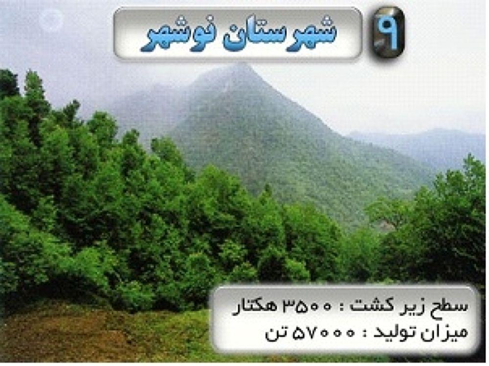 nooshahr by hajikola