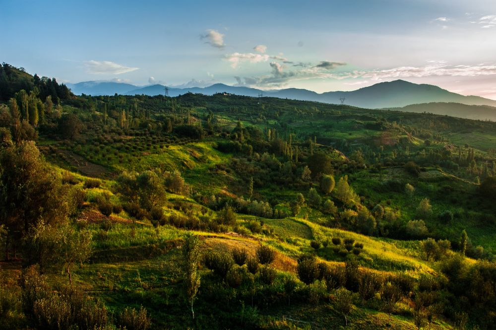 Photo in Landscape #landscape #meadows #land #forests #heaven #kashmir #trees #orchards #sunset #horizon #ypa2013