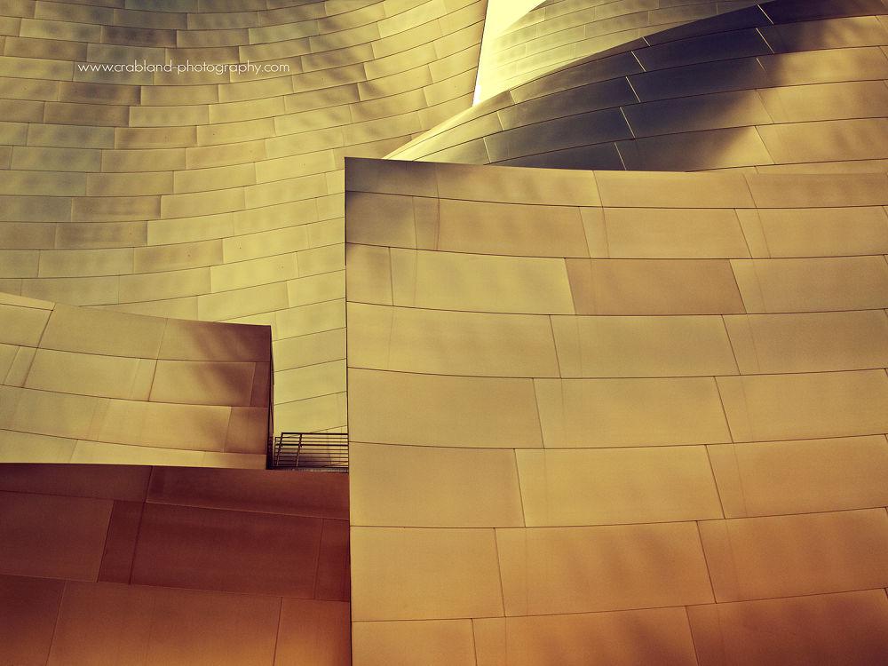 Disney Concert Hall by auri