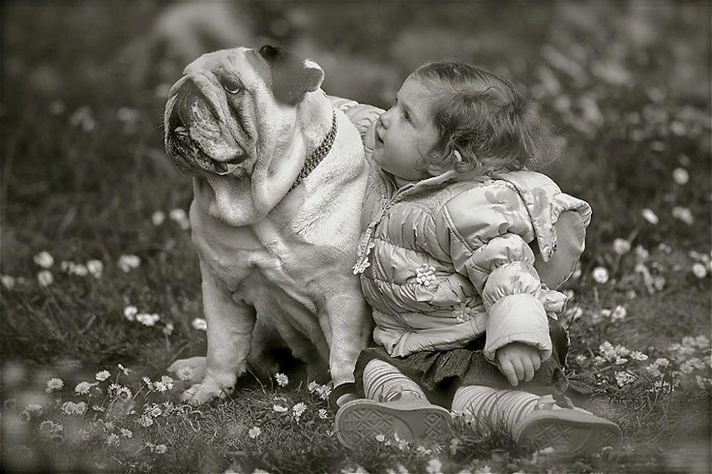 """...""""Friend""""... by claudiogennari"""