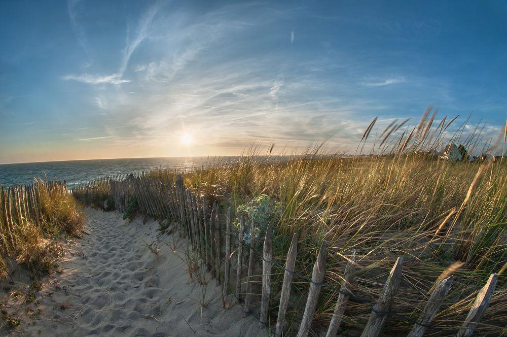 pathway to the beach by Matthieu Lumen