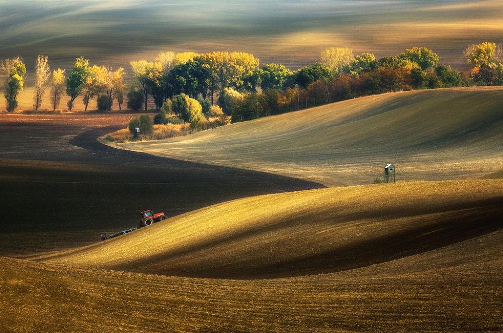 Autumn fields by Krzysztof Browko
