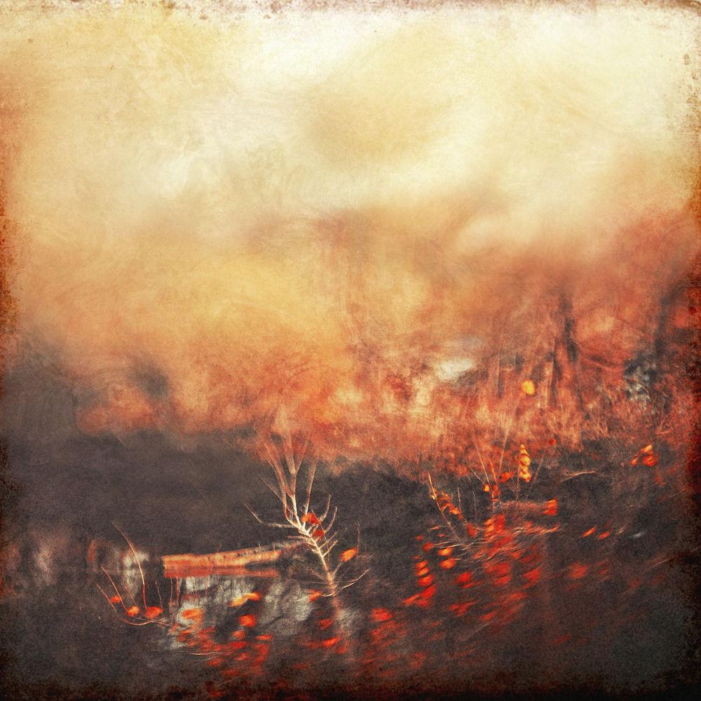Photo in Random #boat #tree #red #autumn #river #blur