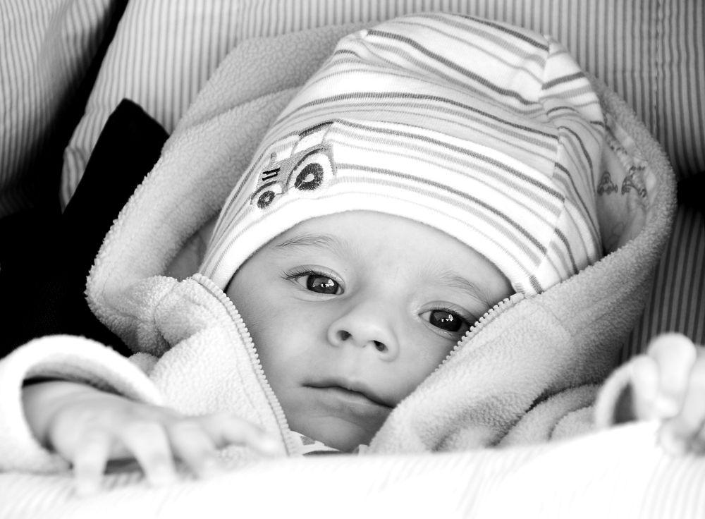 Little Finn by Andi969