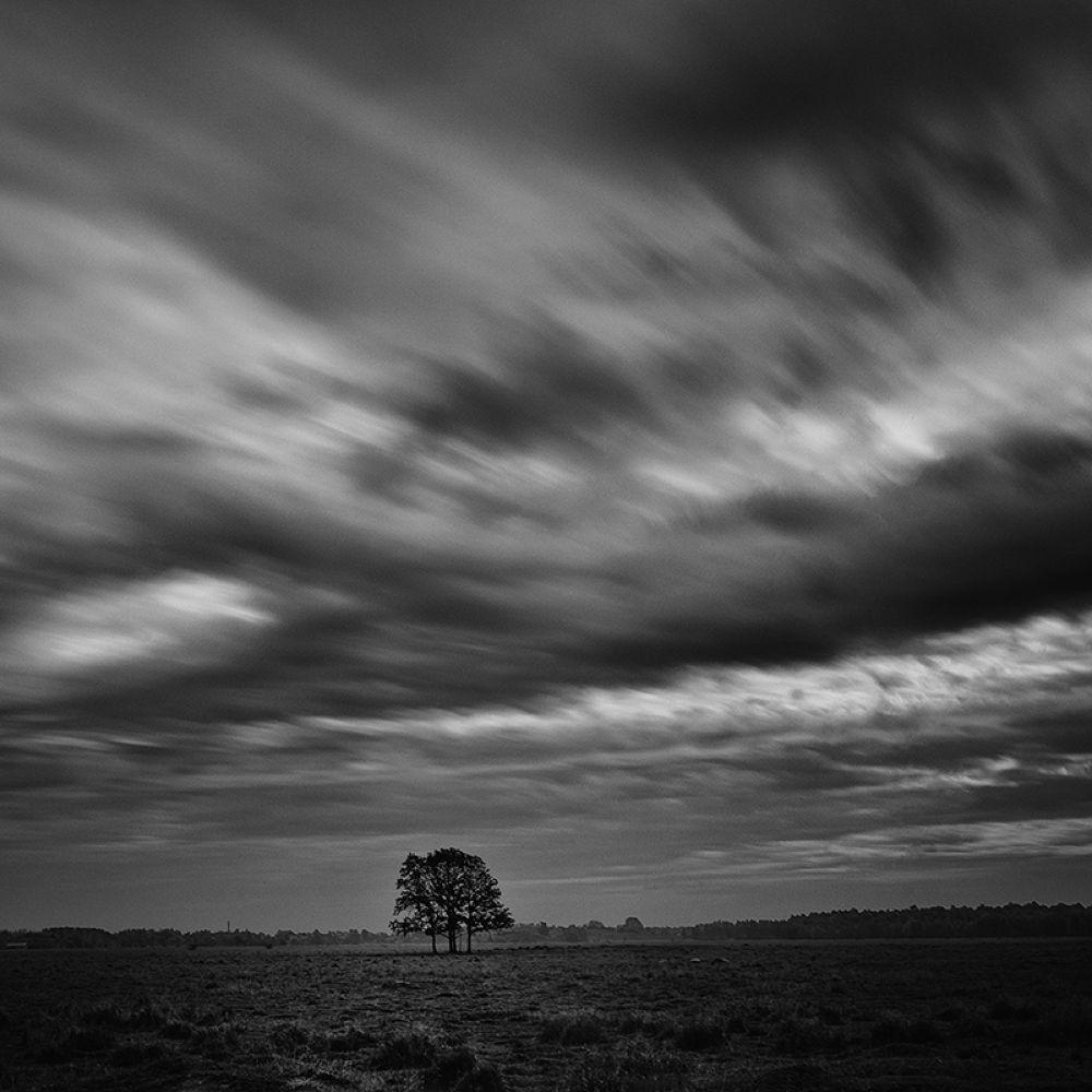 Vestamager- Denmark 2013 by Frodi Brinks