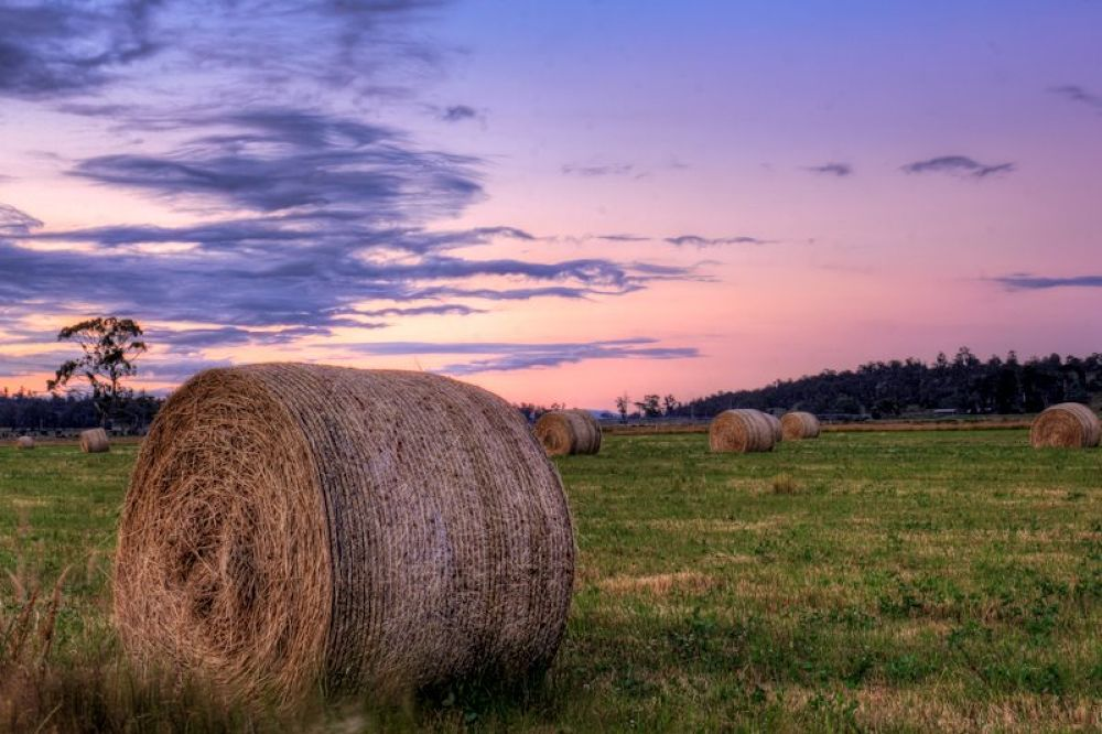 Hay Bales by Mad Keane Photography