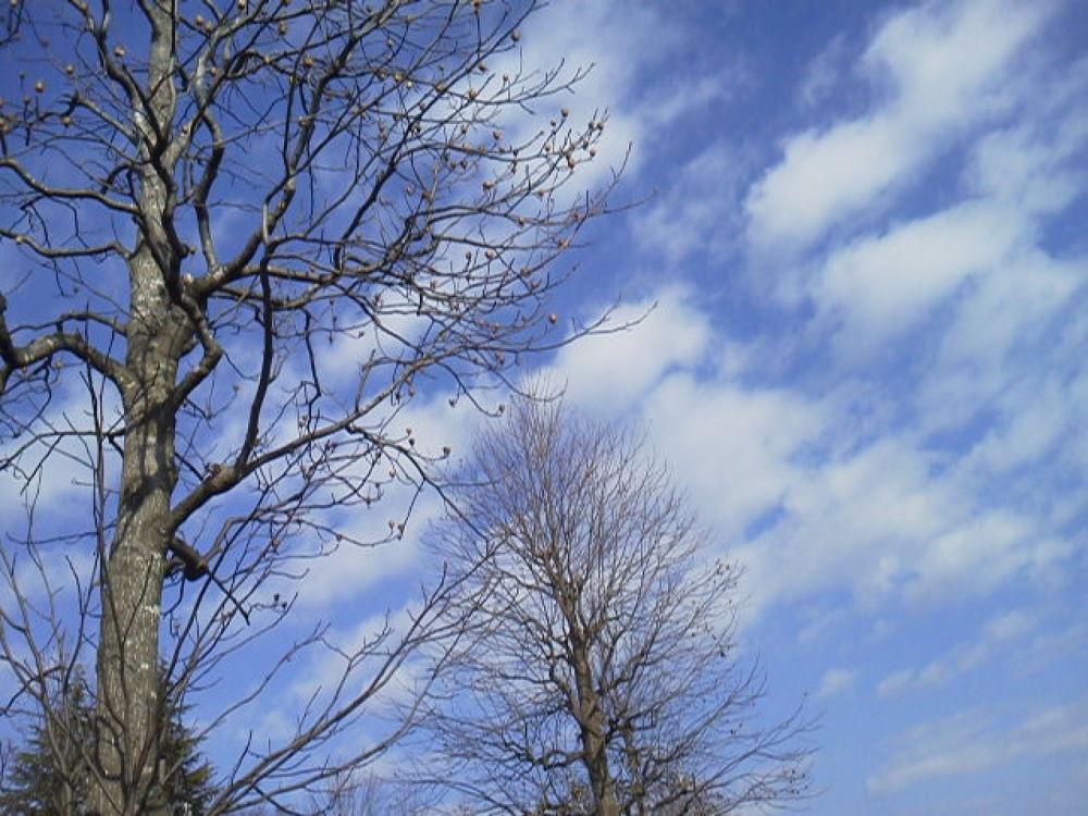 Clouds by Kyoko Kanazawa