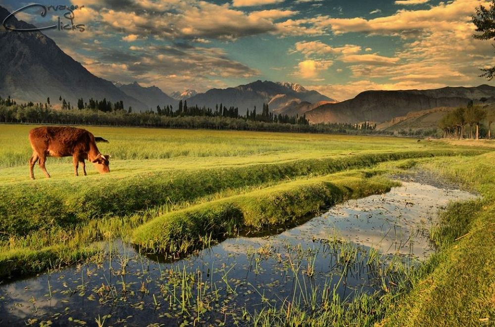 Explorer the beauty of nature by CaZym VaZyr