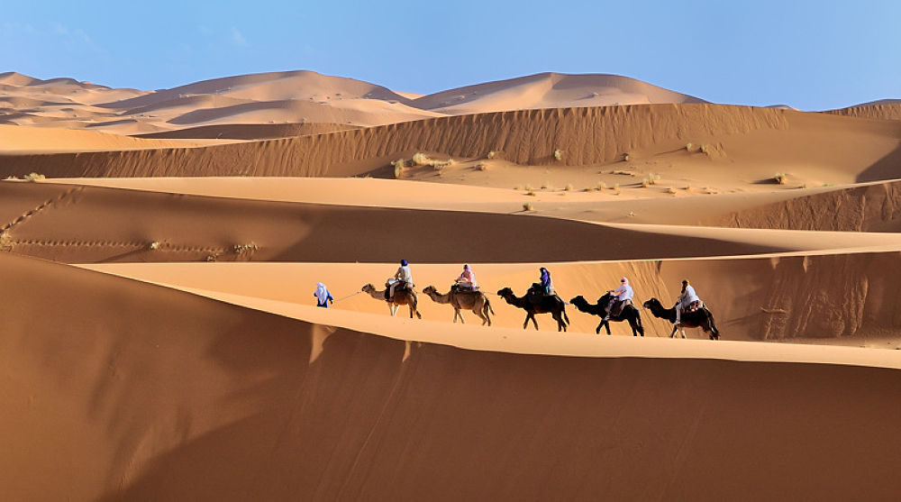 Photo in Landscape #desert #sahara #dromadaire #maroc