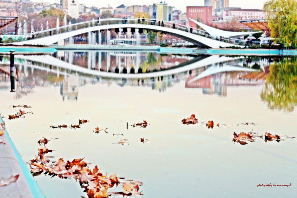 November and leaf.. by omurcanyerli