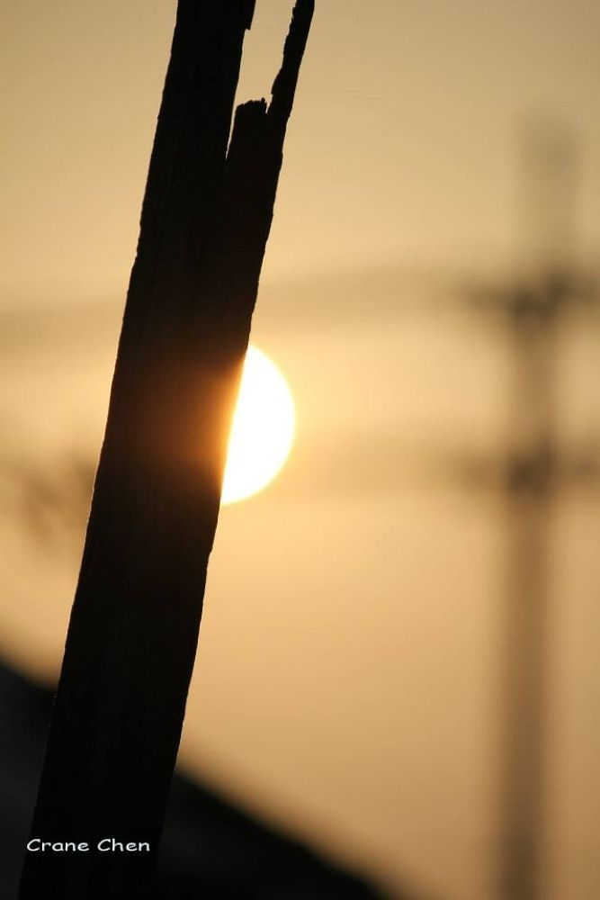 image by cranechen
