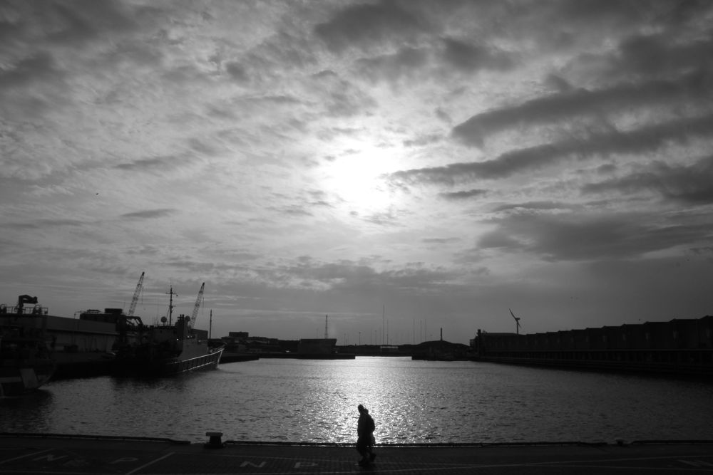 IMG_3798 by cranechen