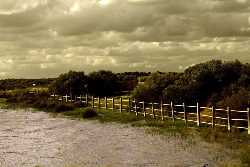 Entre el río y el cielo. by toti camacho troyano