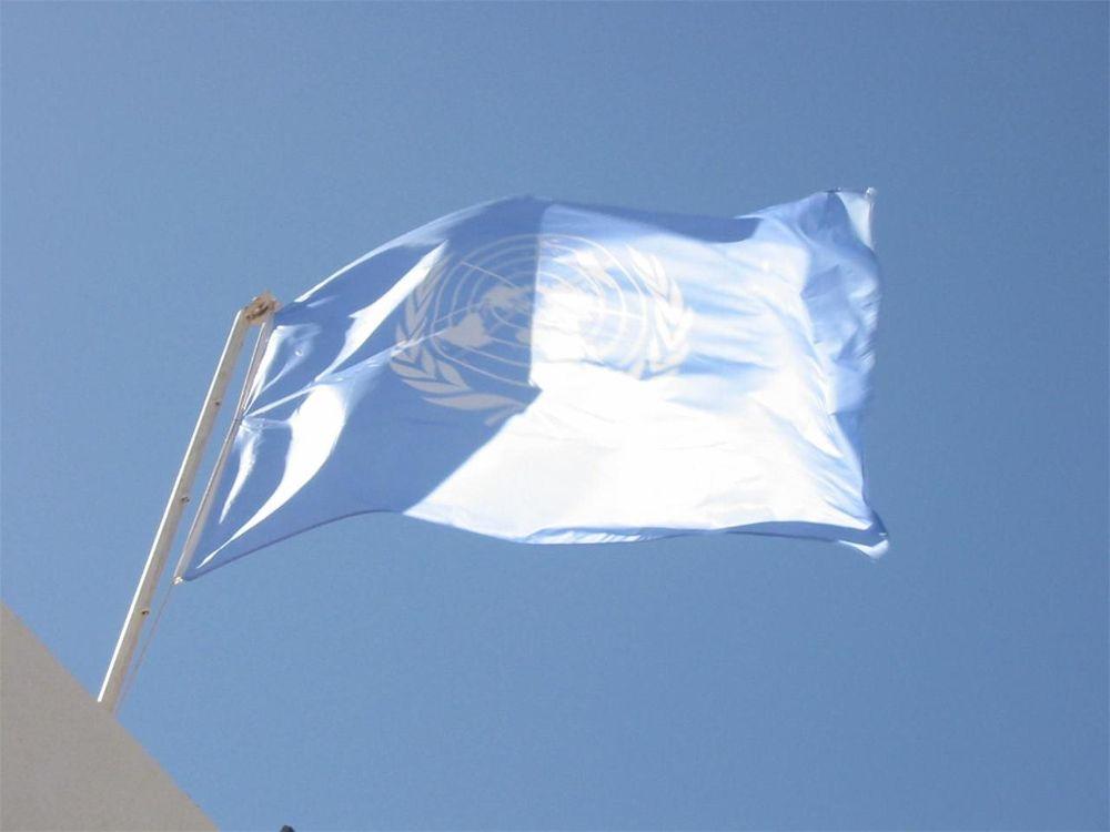 UN flag by paulo antunes