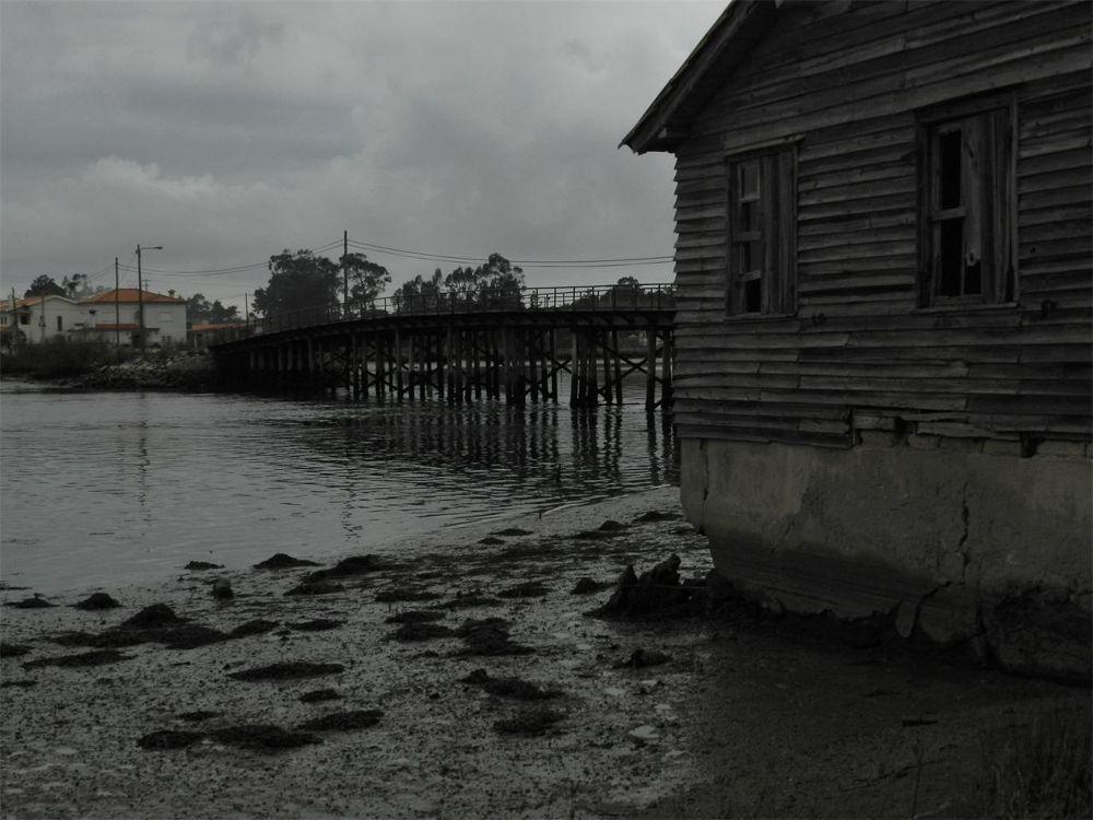 Ponte de pau by paulo antunes