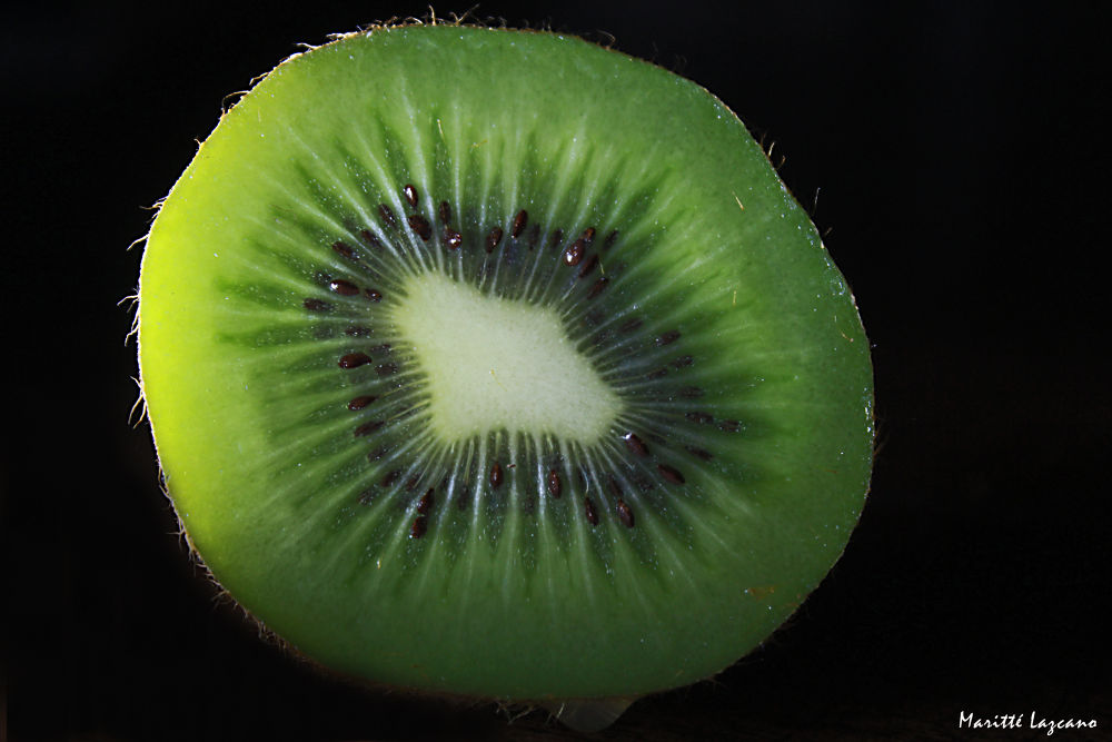 Kiwi by marittelazcano