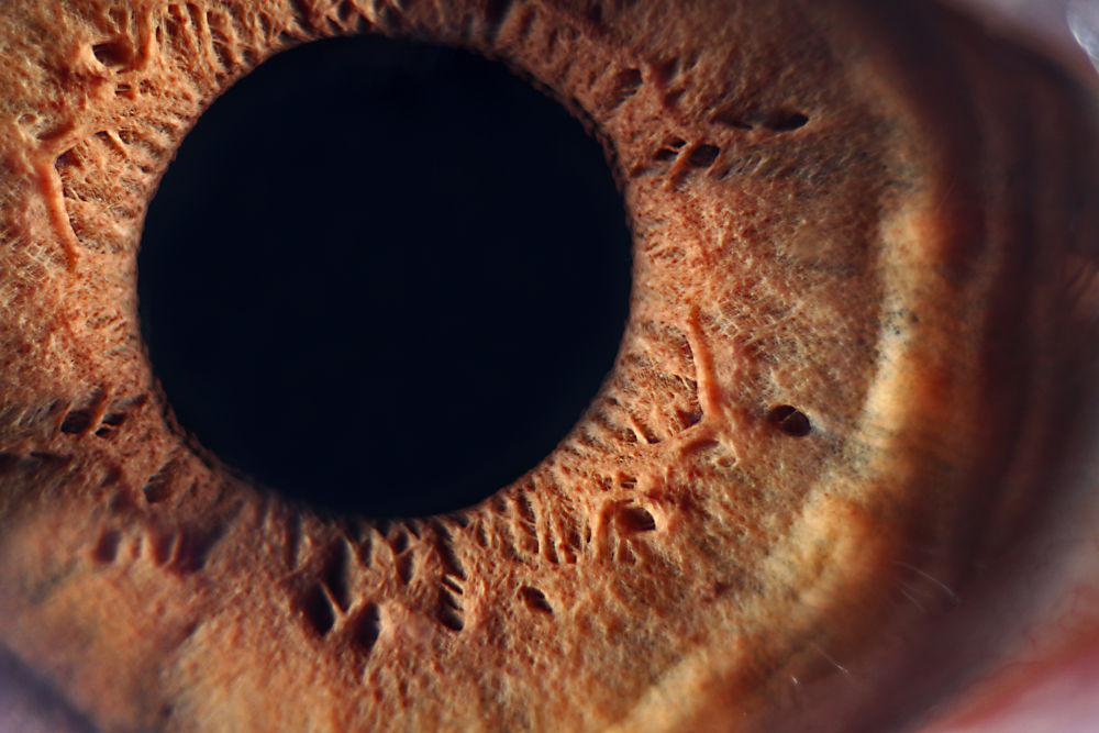 Macro: ojo  by marittelazcano