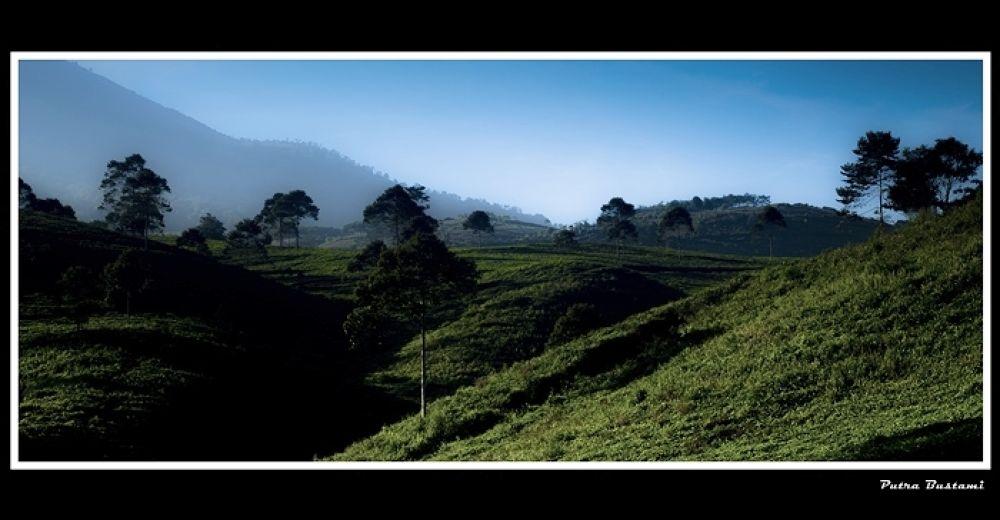 Photo in Landscape #putra #landscape #nature #weather