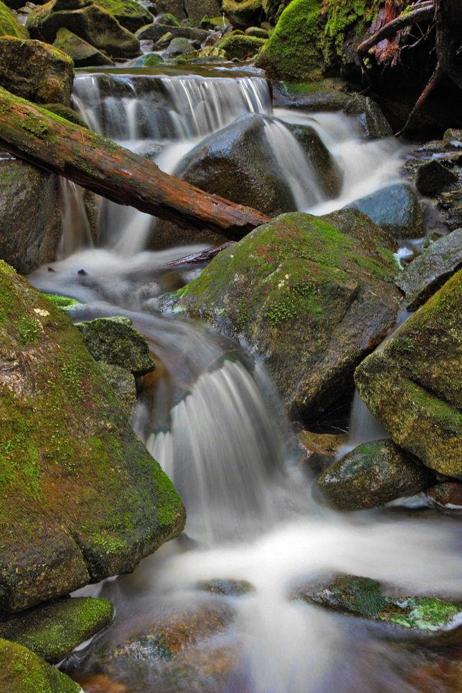 Photo in Nature #waterfall #creek #stream #beauty #canada #bc