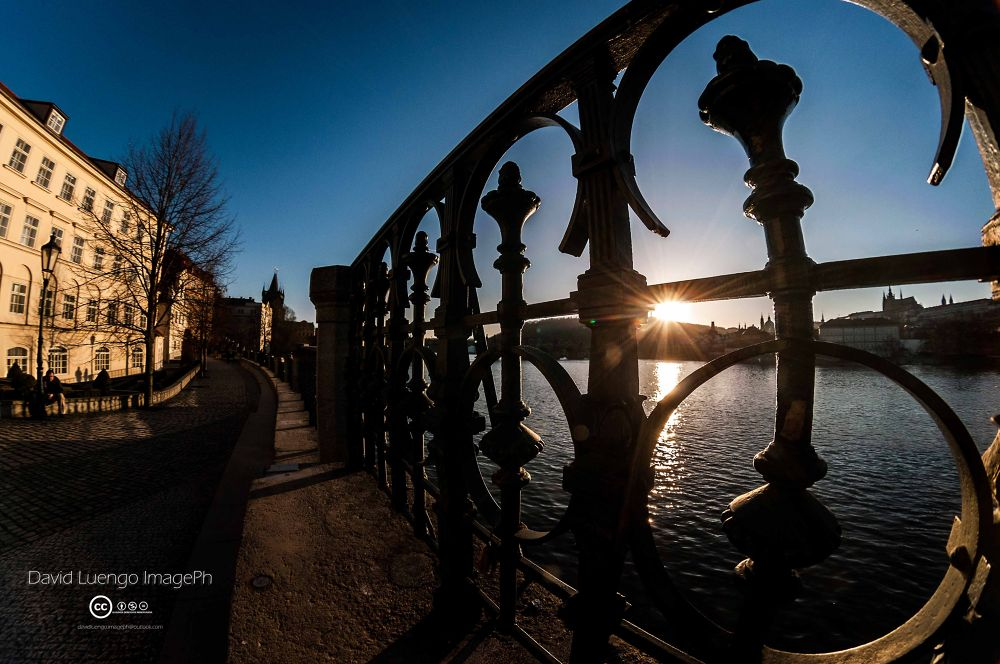 Railing on the river by David Luengo