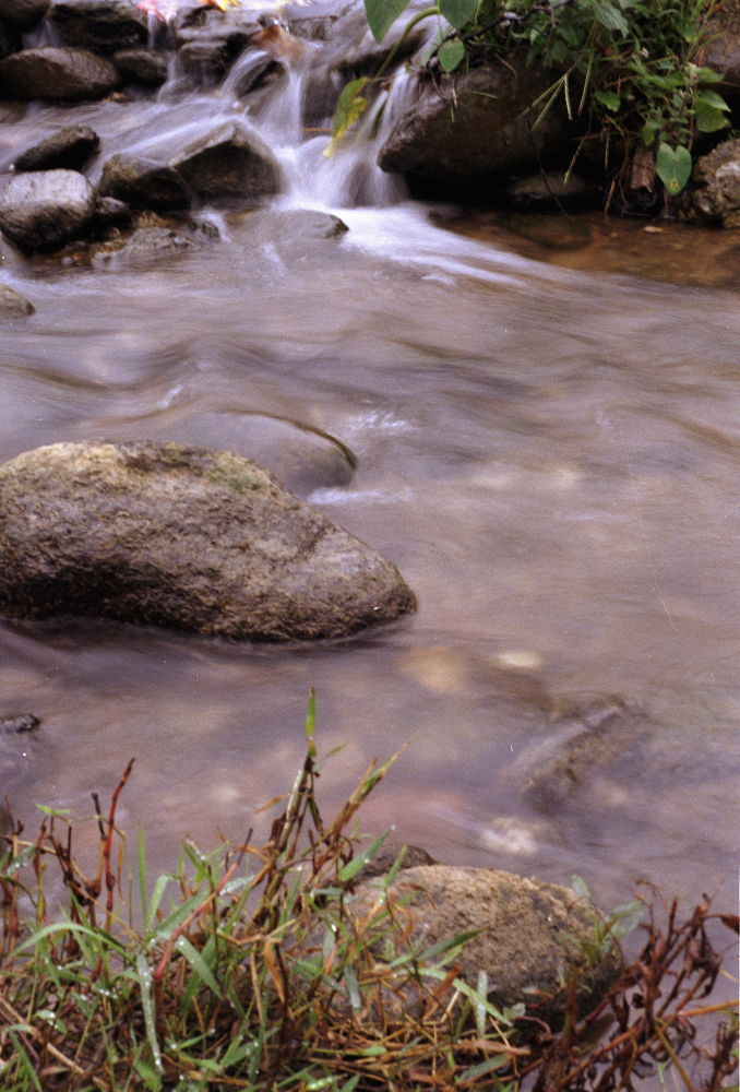 The streamline by kouzmicserguei