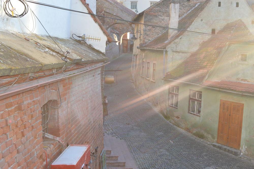 winter sun by andrada