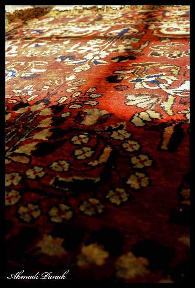 untitled-039 by Alireza Ahmadi Panah