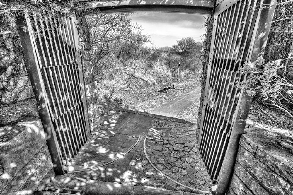 Entrance by Richard Marks