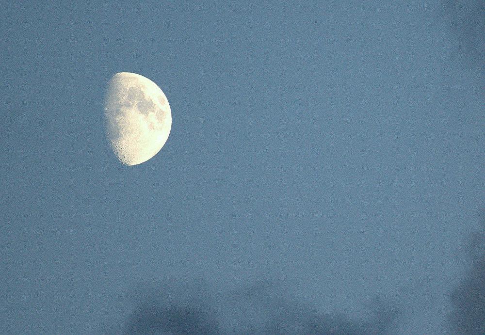 Moon by Anita Krecz