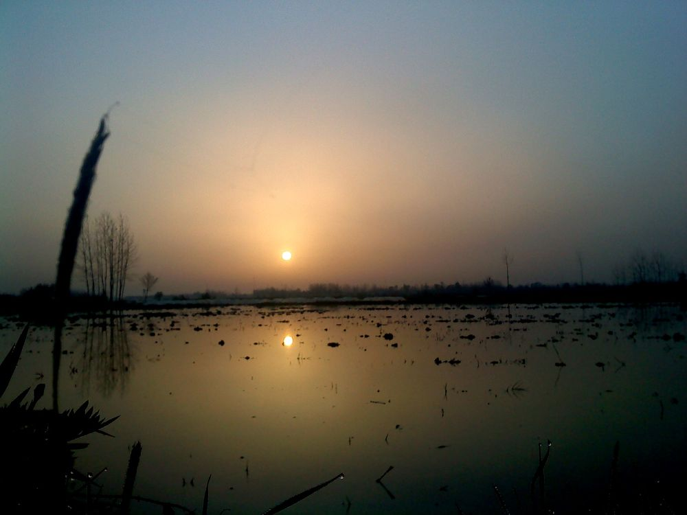 Photo in Landscape #sunset #iran #gilan #matak