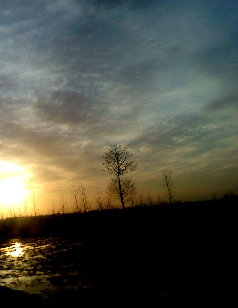 sunshine by matak