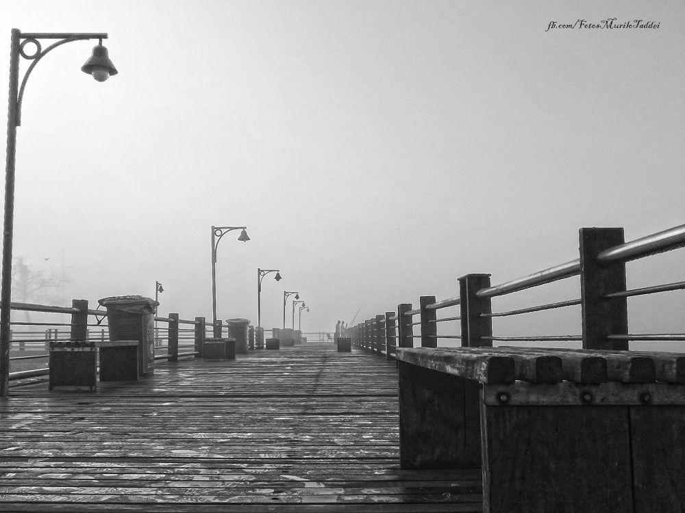 Santos - SP - Pier dos Pescadores by MuriloTaddei