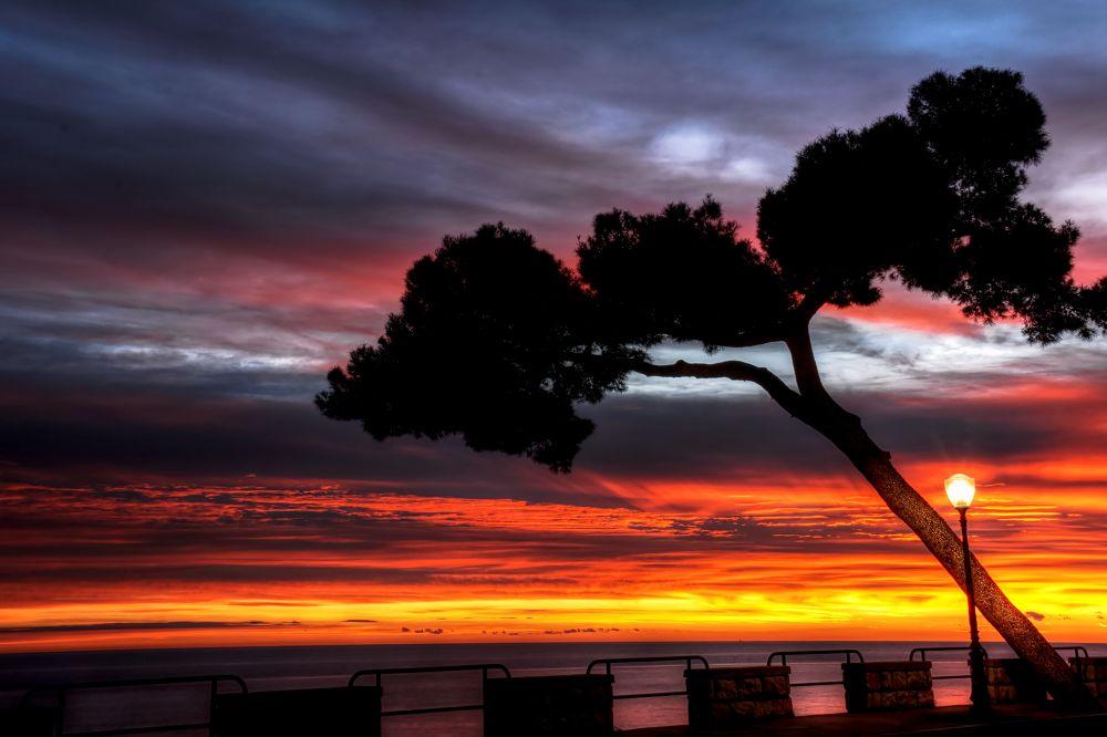 sunrise in méditerrannée (menton alpes maritimes) by gilles couturier